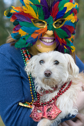 dog-mardi-gras-celebration