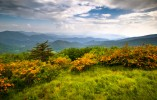 Appalachian-Trail-northern-region