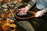 fly-fishing-tennessee-state-parks